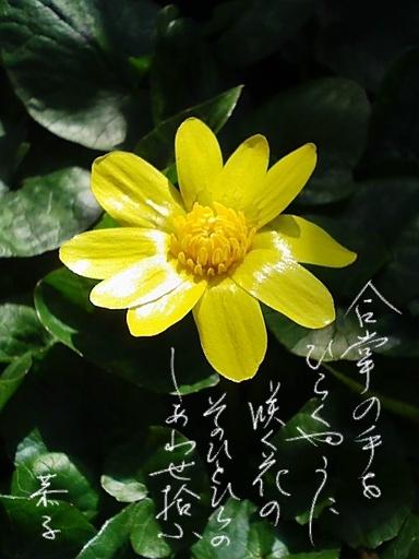 Ryukinka_4
