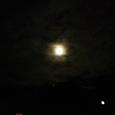 散歩道の満月