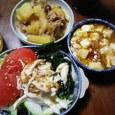 肉じゃが・麻婆豆腐・和風サラダ